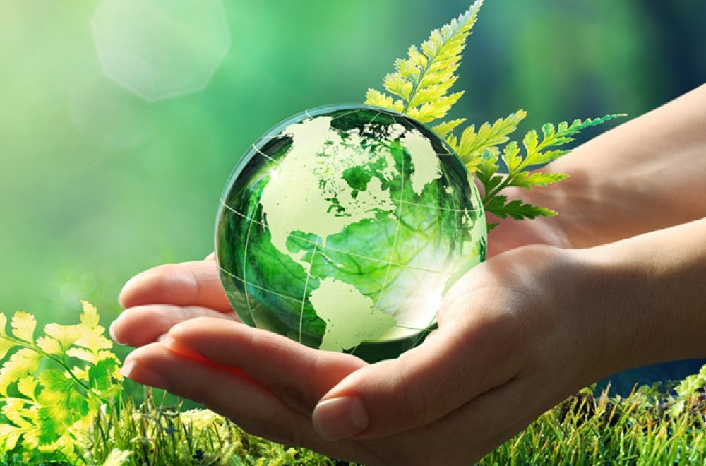 green image with globe, grass and hands